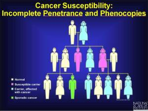 Source:National Cancer Institute